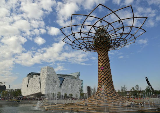 5 things you might not know about Expo 2015 Milan
